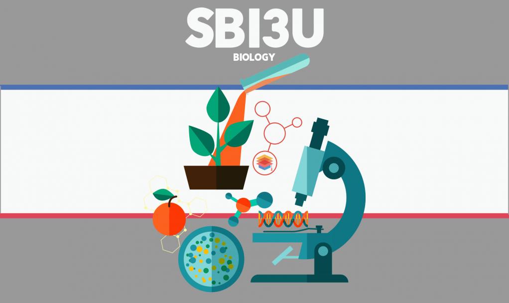 SBI3U – Biology – Grade 11 - Ontario eSecondary School