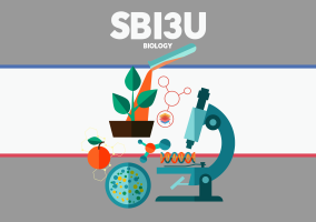 SBI3C – Biology for College – Grade 11