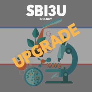 Upgrade SBI3U