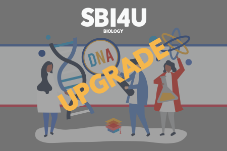 SBI4U UPGRADE