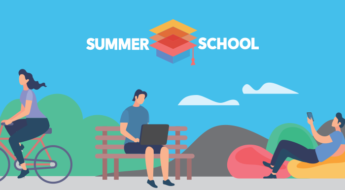 Summer School Online